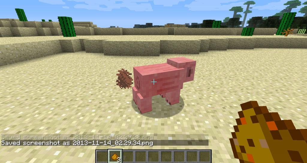https://img.9minecraft.net/Mod/My-Buddy-Porkchop-Mod-1.jpg