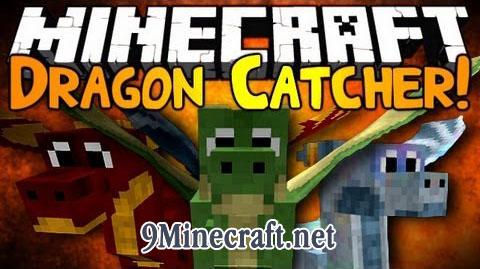 https://img.9minecraft.net/Mods/Dragon-Catcher-Mod.jpg