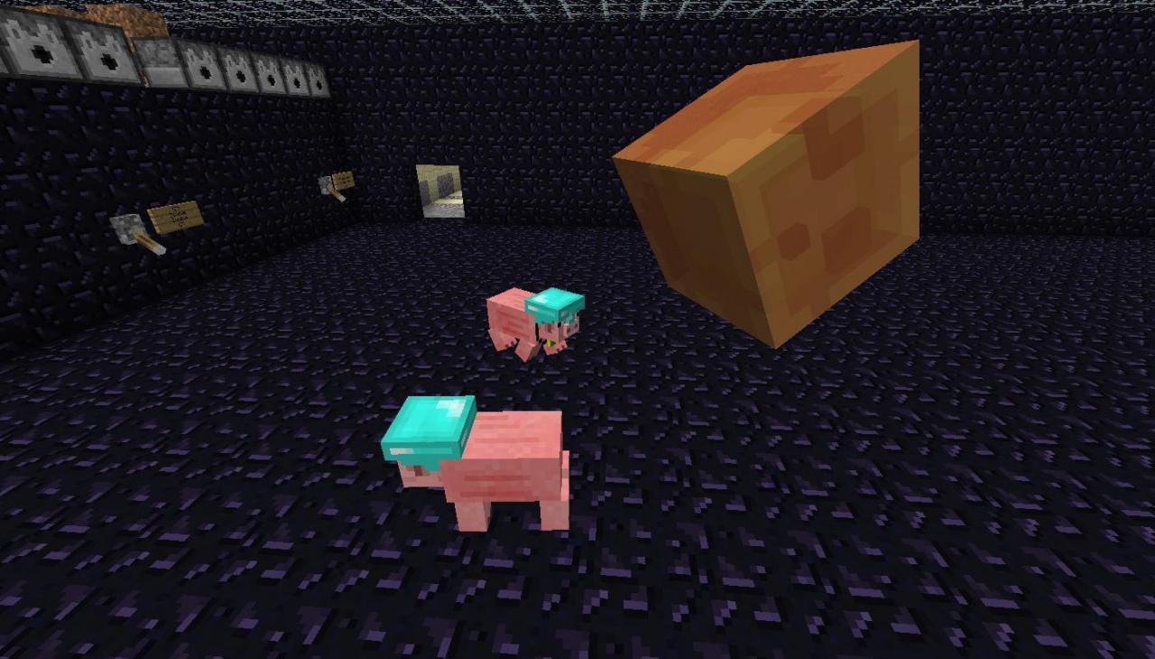 https://img.9minecraft.net/Mods/Pig-Companion-Mod-4.jpg